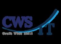 logo CWS-IT