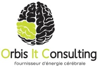 logo ORBIS IT CONSULTING